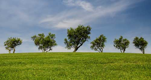 Brennwerttherme-Umwelt