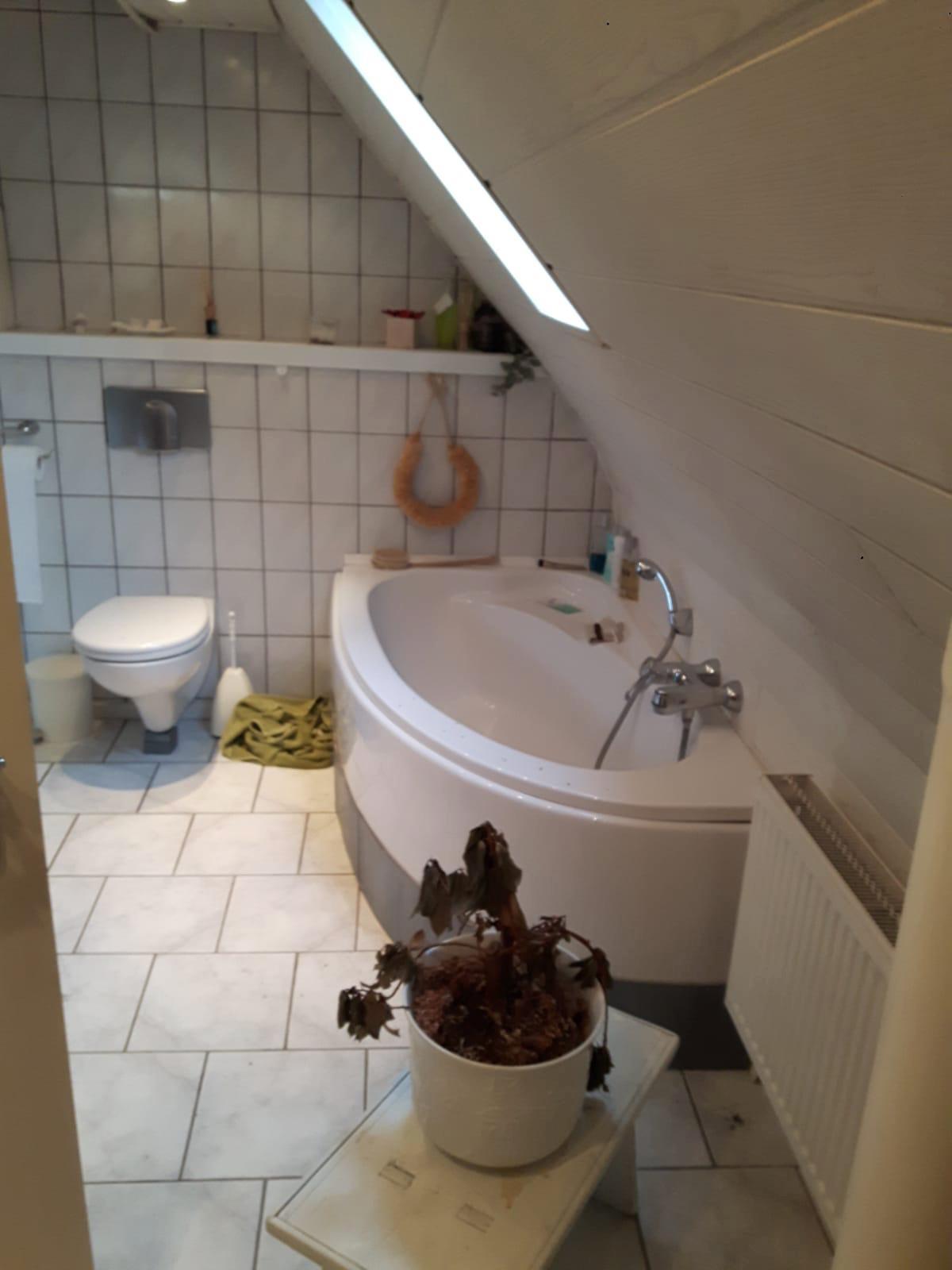 Kundenprojekt-Bad-Dach-1